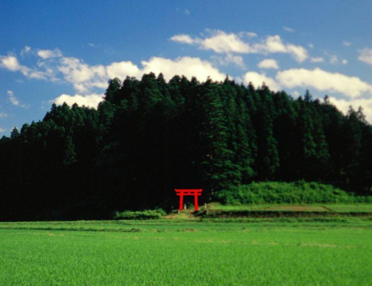 坪沼八幡神社について