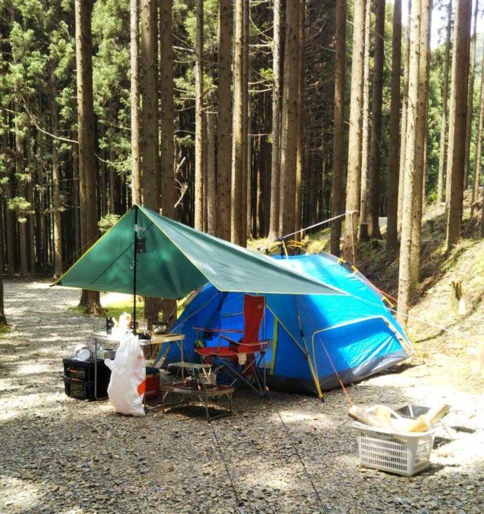 芦見谷芸術の森の林間サイト