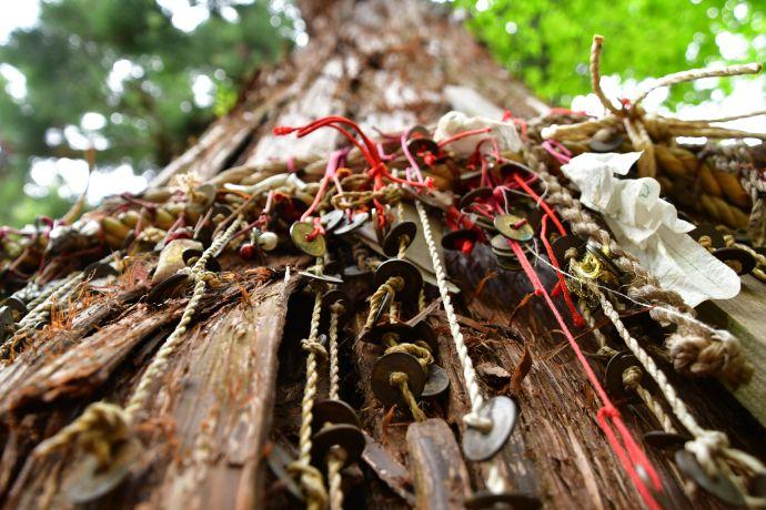 福島県耶麻郡にある磐椅神社に良縁祈願として結ばれる5円玉