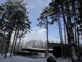 青森公立大学国際芸術センター青森の風景