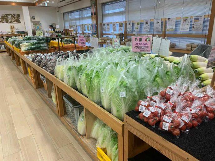 滋賀県高島市にある藤樹の里あどがわで並ぶ新鮮な野菜たち
