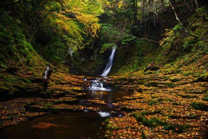 日本サンショウウオセンターからほど近くの赤目四十八滝と紅葉