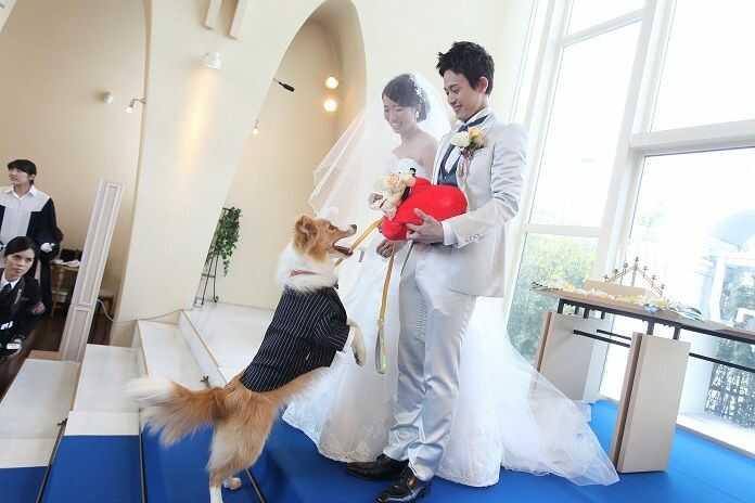 愛犬と共に式を挙げる新郎新婦