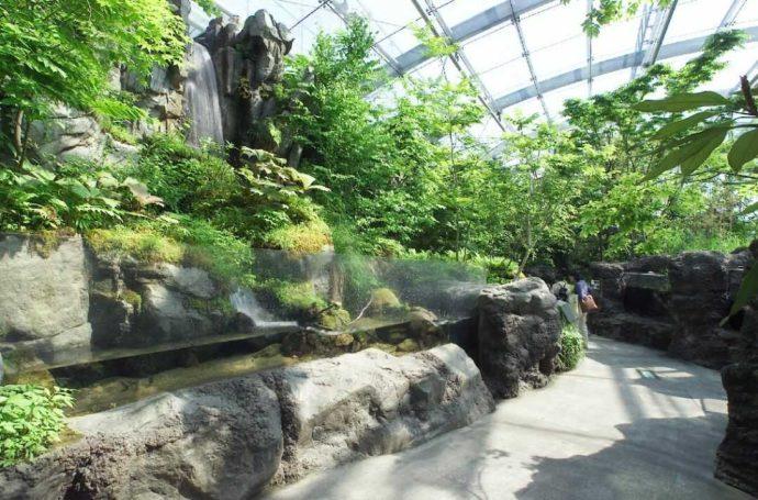 「環境水族館アクアマリンふくしま」のふくしまの川と沿岸コーナー