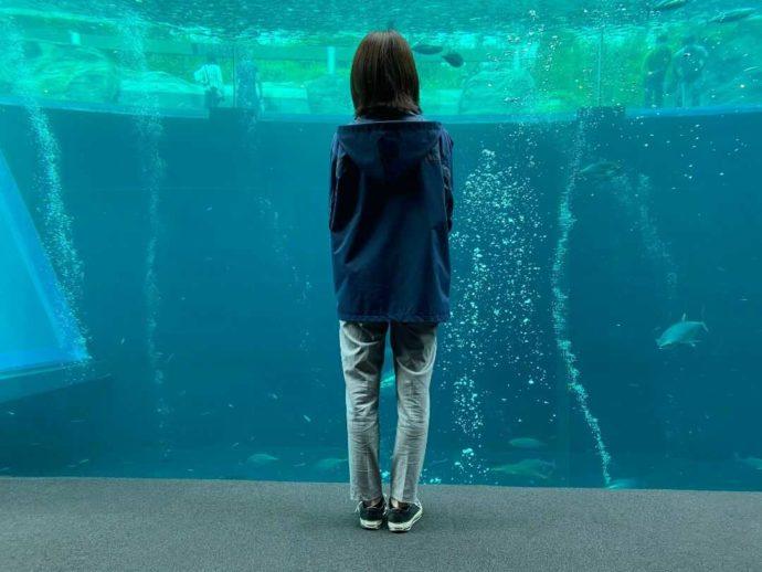 「環境水族館アクアマリンふくしま」広報担当の千野さん