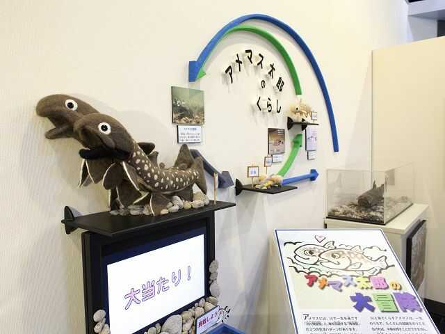 美幌博物館の遊べるコーナーがある第2展示室