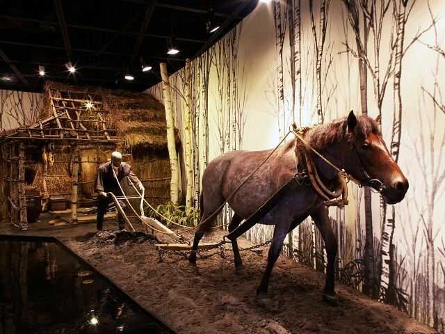 美幌博物館で見られる北海道の農業の様子