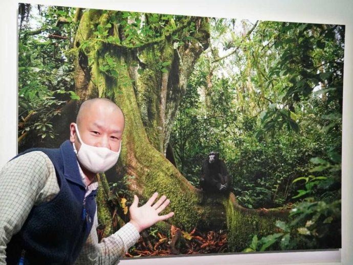 美幌博物館の前川さんの写真を紹介する学芸員さん