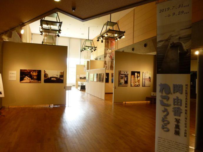 岡田紅陽写真美術館・小池邦夫絵手紙美術館の展示の様子