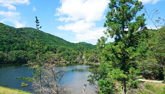 冒険の森のせの水上をわたるジップライン