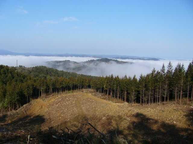 チロリン村キャンプグランドから見える雲海