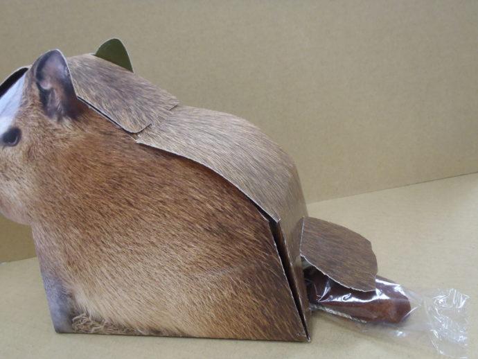 竹島水族館のオリジナルグッズ・カピバラの落とし物(カピバラの箱のお尻からチョコ)