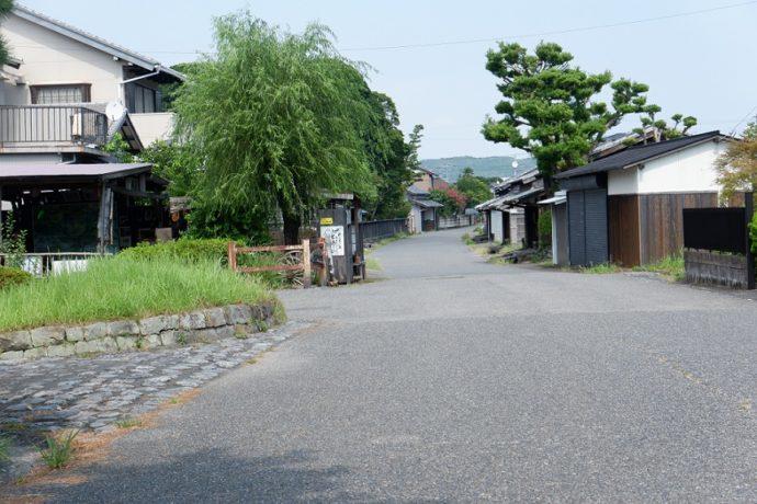 島田市博物館沿いの通路・川越遺跡を西から見たところ