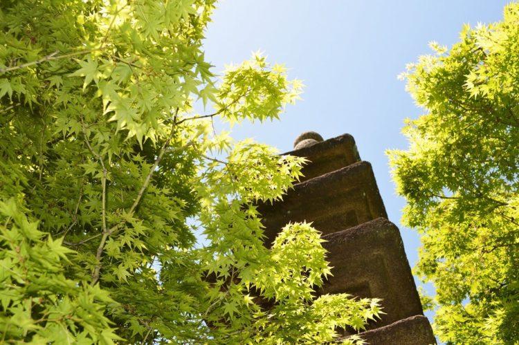 高麗美術館の中庭の石塔・夏