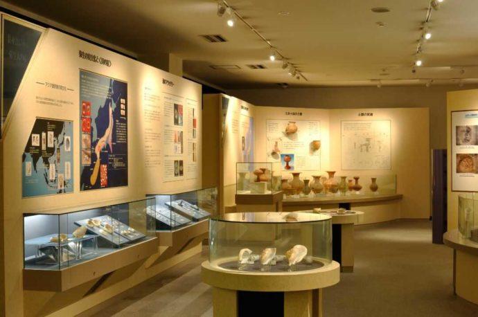 人類学ミュージアムの常設展示室「貝のアクセサリー展示」
