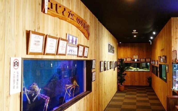 エビとカニの水族館のタカアシガニの水槽