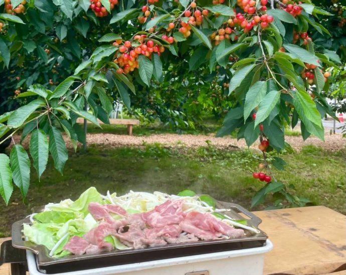 ニトリ観光果樹園でいただけるジンギスカン