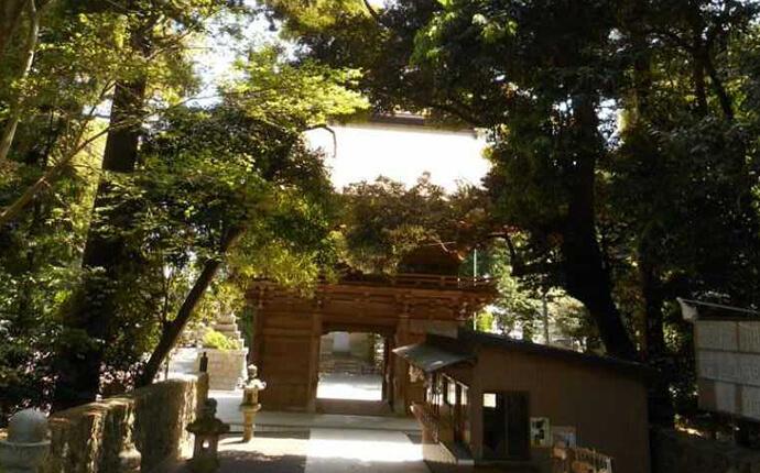 静岡県磐田市にある府八幡宮は緑が豊か