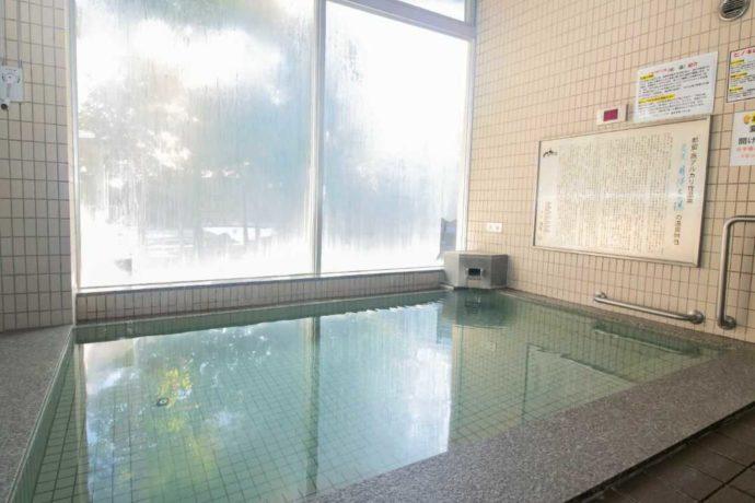 「芭蕉・月待ちの湯」の源泉浴槽