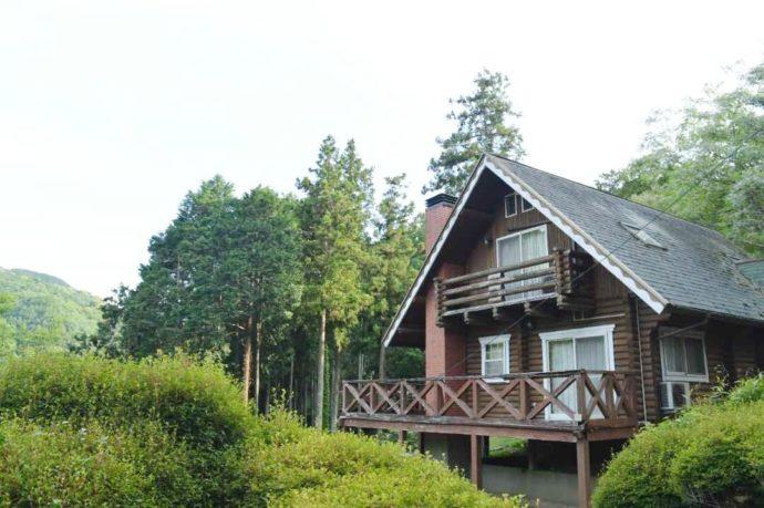 福岡県田川郡にある源じいの森のロッジと木々