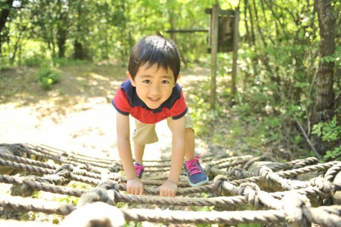 滋賀県米原市にあるキャンプ場・グリーンパーク山東のアスレチックを楽しむ人
