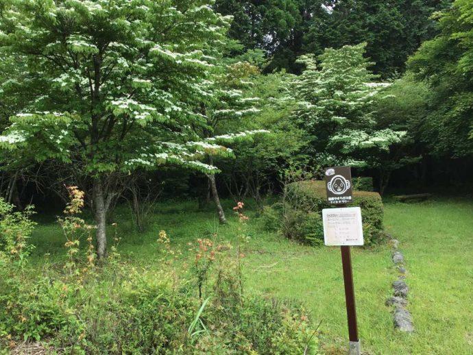 箱根やすらぎの森で参加できるクイズラリー