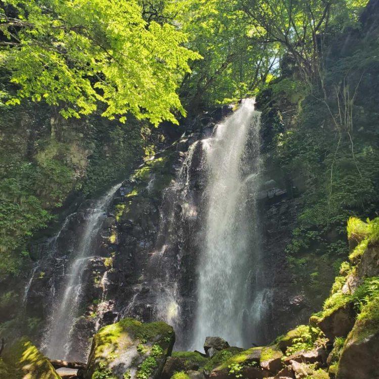 八東ふる里の森で参加できる滝巡りトレッキング