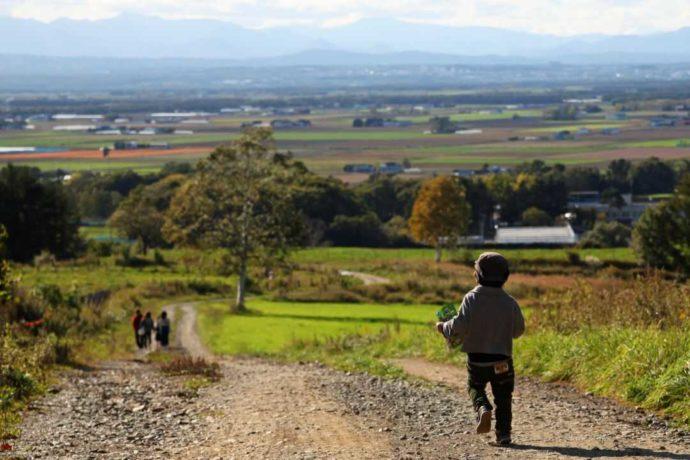 お散歩にもぴったりなハイジ牧場の放牧地の脇道