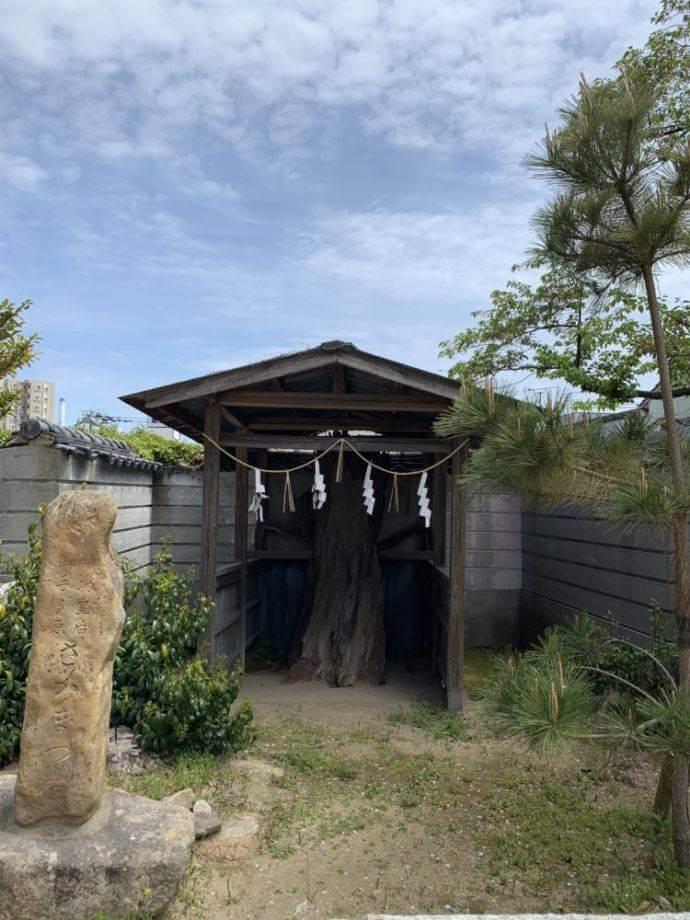忌宮神社の安産祈願について