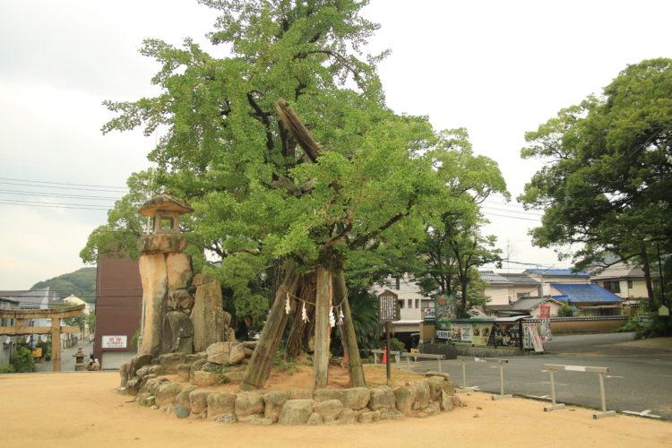 忌宮神社における安産祈願のご利益について