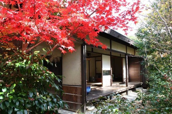日本玩具博物館の秋の紅葉が美しい5号館の外観