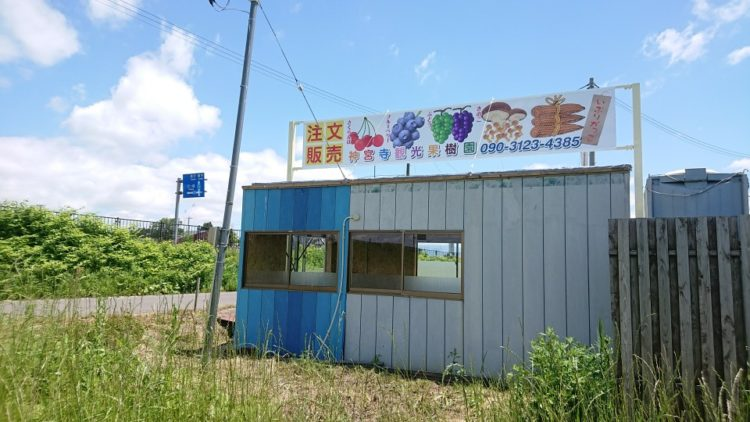 神宮寺観光果樹園の設備や直売所で販売されている商品について