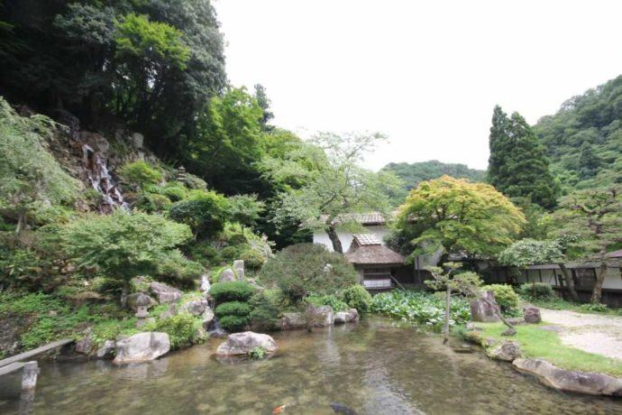 櫻井家の庭園全景