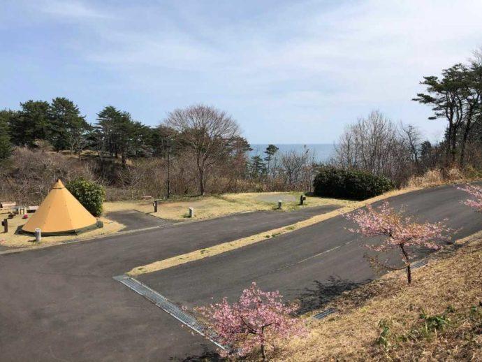 宮城県本吉郡にある神割崎キャンプ場のオートサイトを引きで眺める