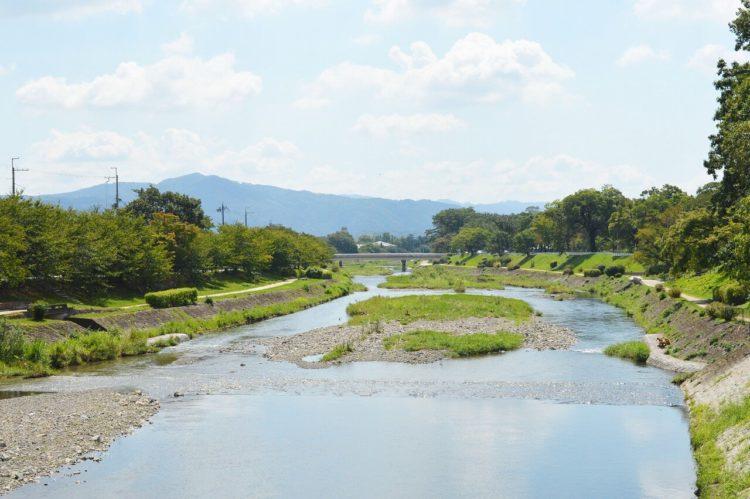 高麗美術館の美術館近くの加茂川
