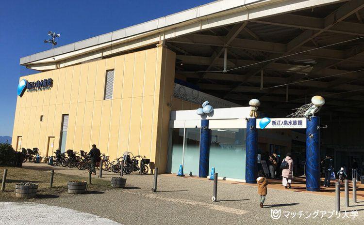 新江ノ島水族館デートプラン!