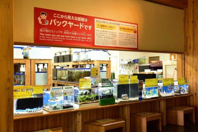 鳥取県鳥取市にあるかにっこ館のバックヤード