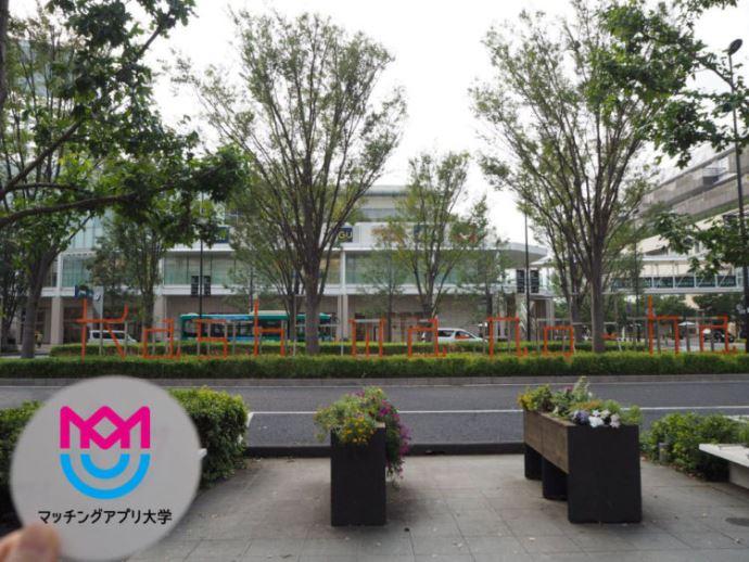 千葉県柏の葉でオススメのランチデートプランを紹介!