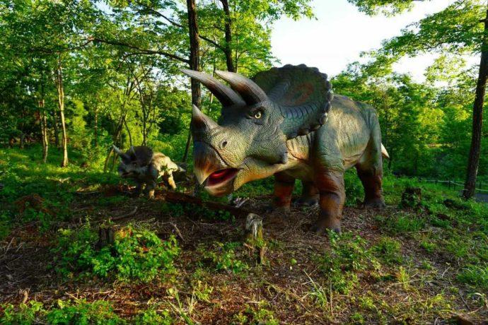 かつやまディノパークに展示されているトリケラトプス