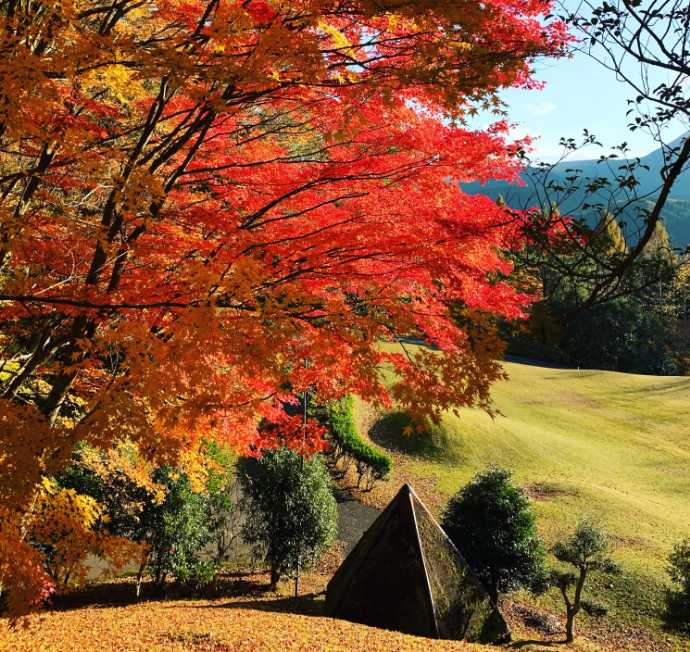 久万青銅之廻廊付近の紅葉が美しいスポット