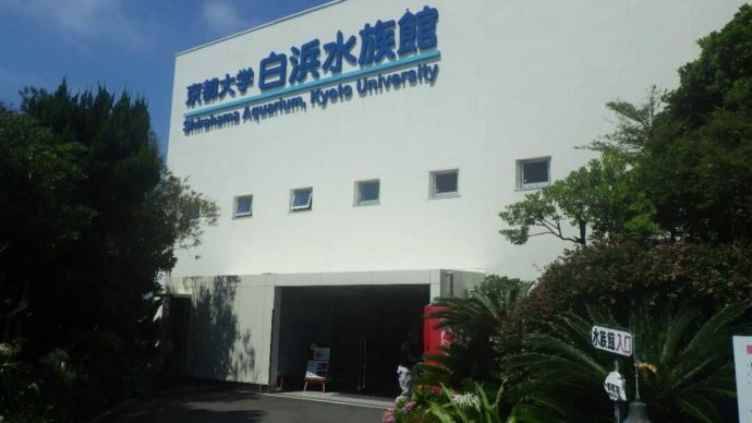 京都大学白浜水族館の入り口