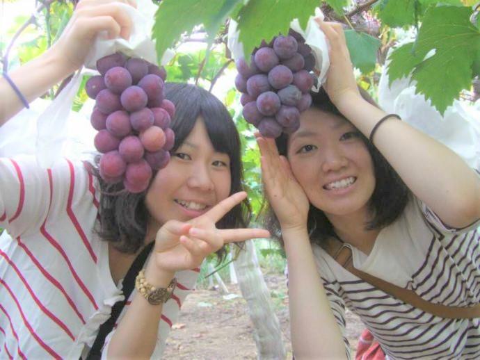 まほらファームで果物狩りを楽しむ女性