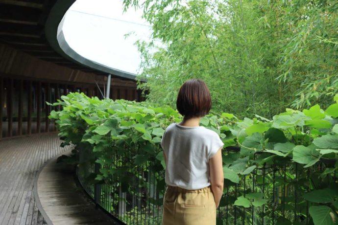 高知県立牧野植物園の広報担当楠山さん