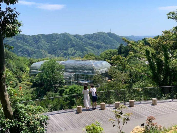 こんこん山広場からの景色と温室外観を眺めるカップル