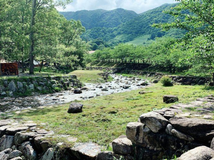 豊かな自然が魅力の滋賀県高島市のキャンプ場「マキノ高原」の敷地内