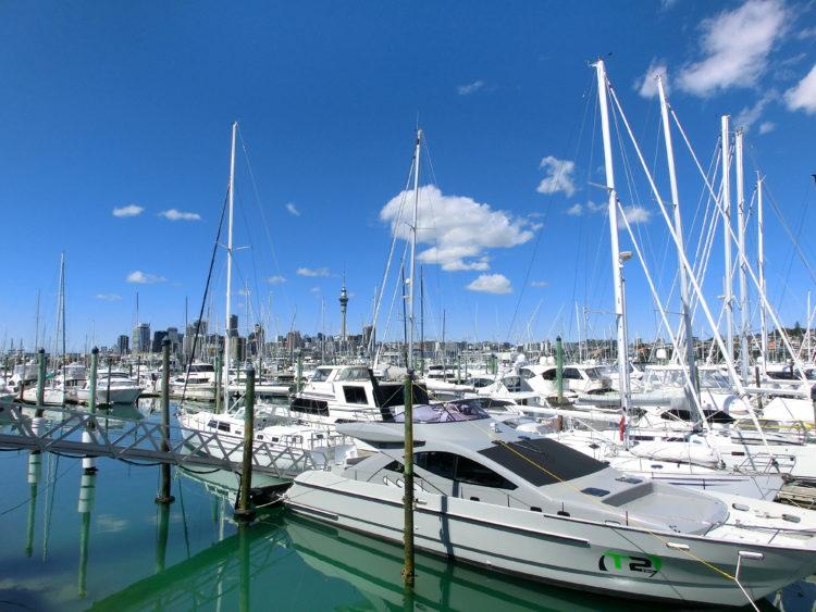 MAPPLE Activity Onlineのニュージーランドツアー(オークランド)で見られる船