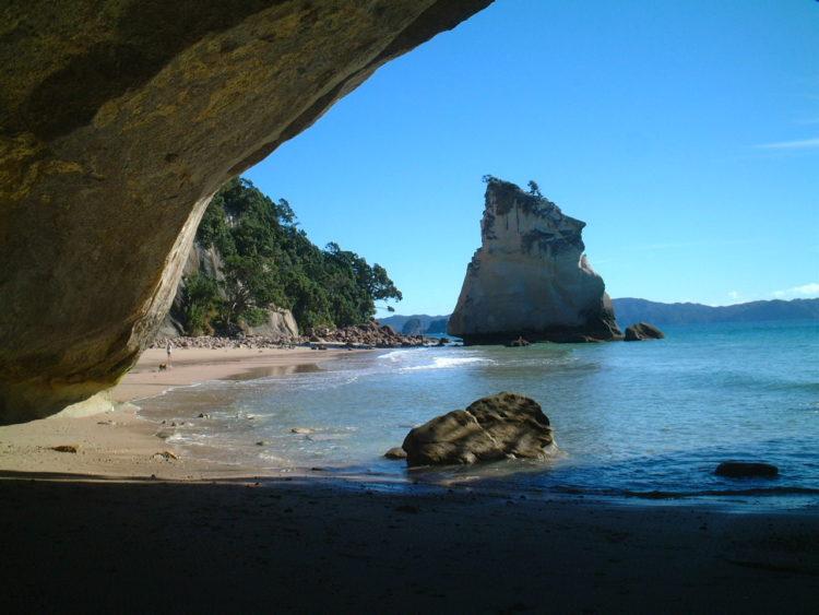 MAPPLE Activity Onlineのニュージーランドツアーで訪れたコーラマンデル半島