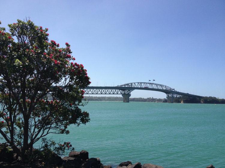 北島を周遊するMAPPLE Activity Onlineのニュージーランドツアー