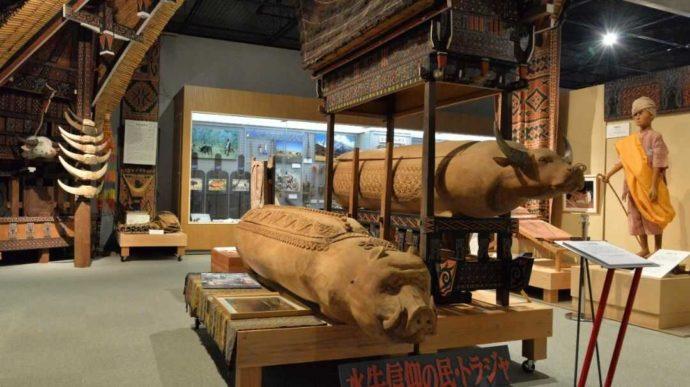 牛の博物館にあるトラジャ族の民族資料