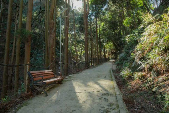 嵐山モンキーパークいわたやまに至るまでの山道の様子